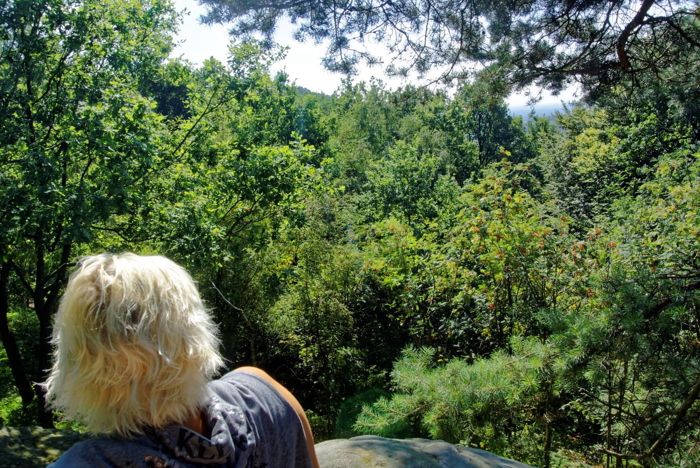 Ausblick am Blücherfelsen