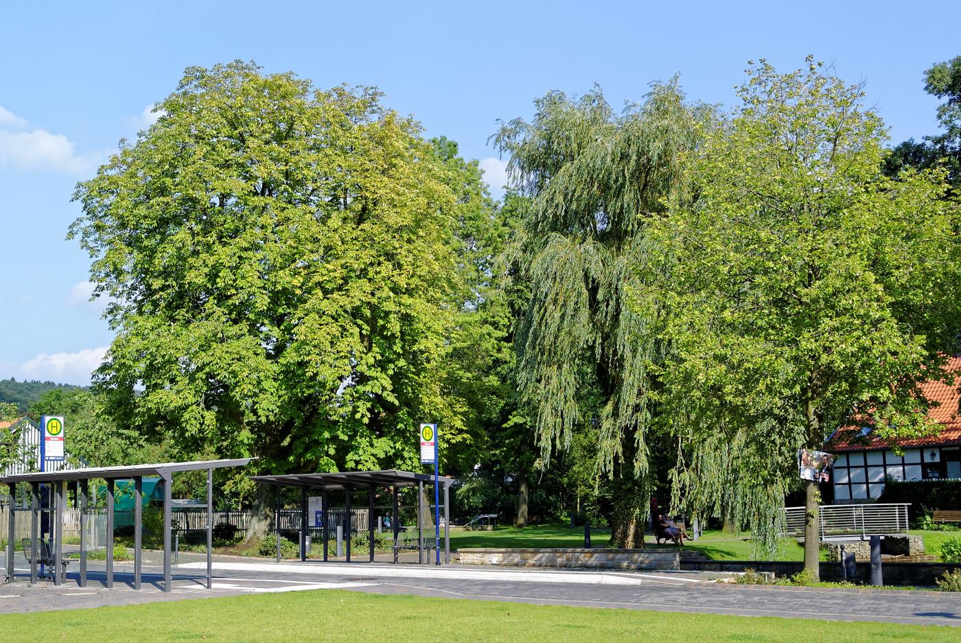Blick vom Heinrich Lienkamp Platz