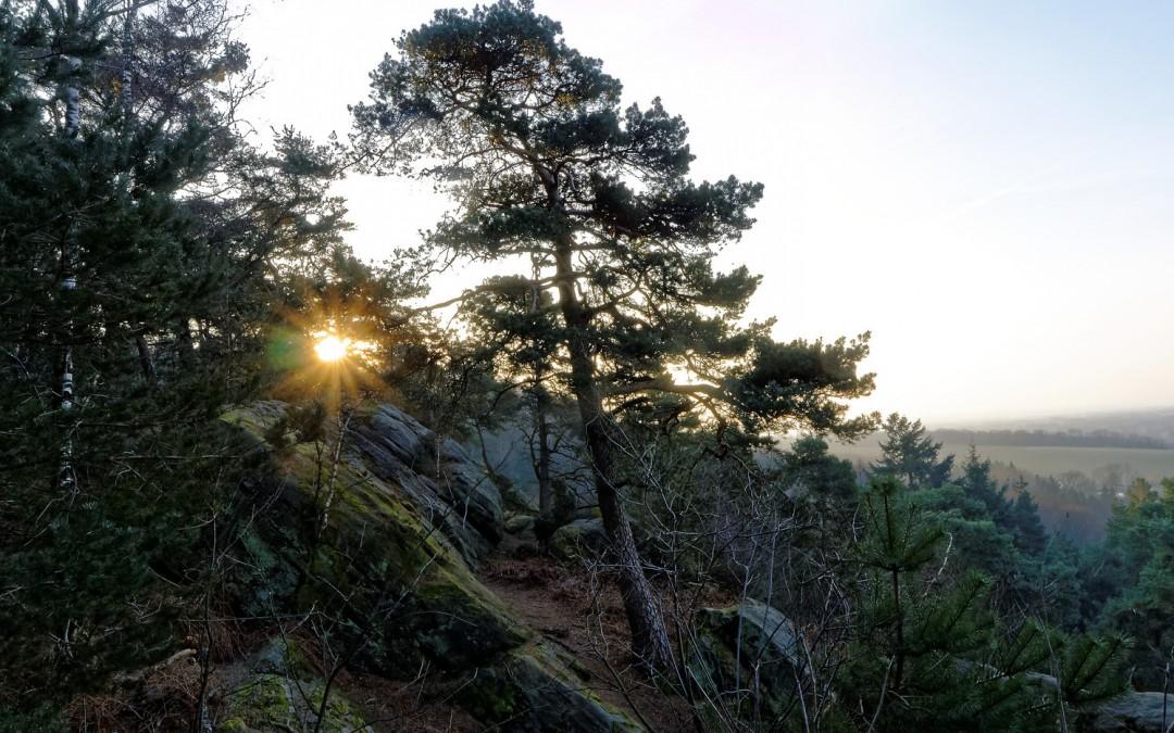 Sonnenaufgang an den Dörenther Klippen