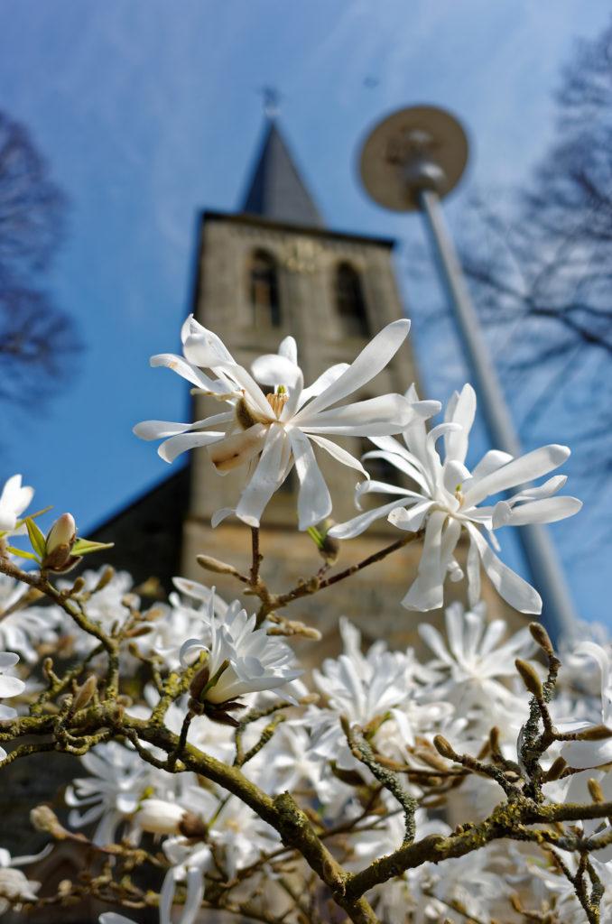 Katholische Kirche Brochterbeck