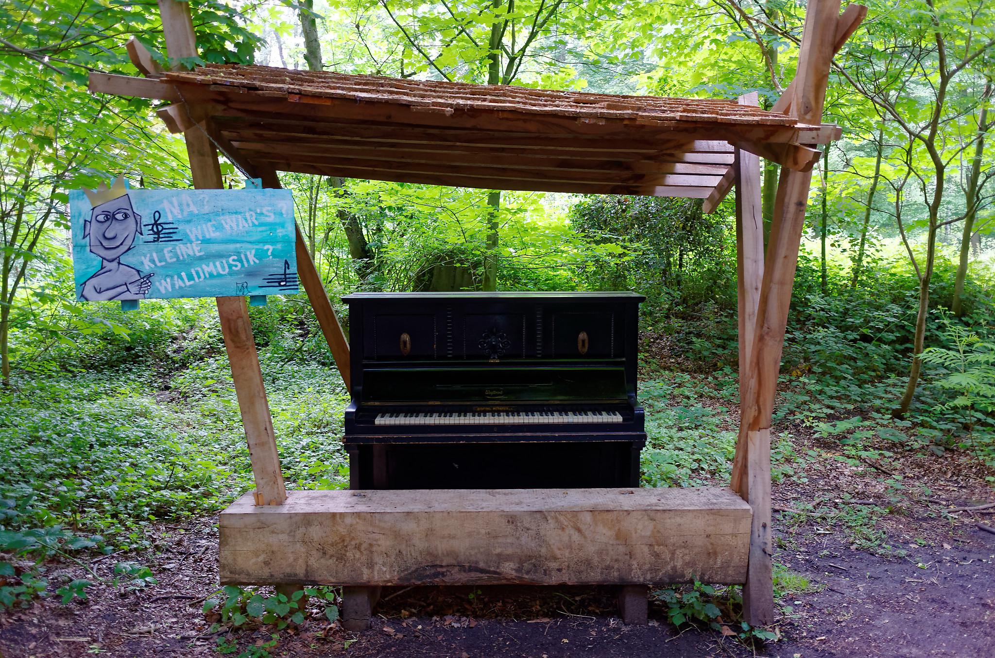 Brochterbeck Klavier im Wald